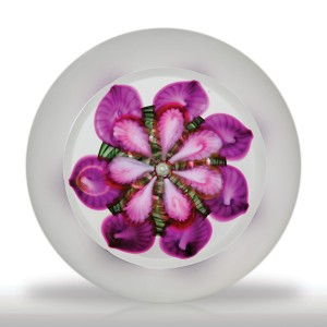 Vandermark purple flower in a frosted ground paperweight. A spiraling green latticinio cushion sits at the center of a clear ground weight, sprouting from its middle an exotic purple bloom. The flower begins with a small bubble at its nexus, from which radiate seven lavender ribbed petals each with a larger, purple petal beneath. Large top facet and frosted sides.