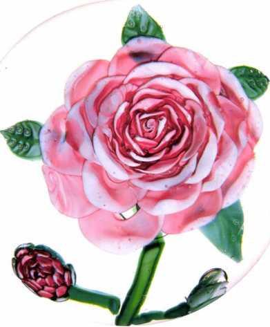 3.22 Mount Washington thonsand-petaled rose weight
