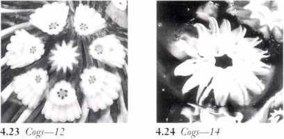 Cog 12