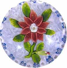 4.118 Double clematis—Baccarat