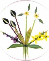 5.83 Chris Buzzini flonil bouquet
