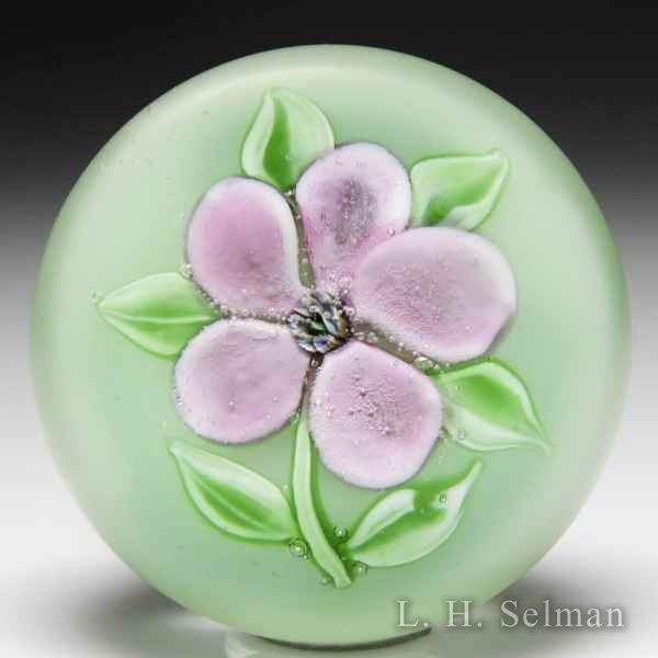 Ronald Hansen dusty pink clematis glass paperweight. by Ronald Hansen