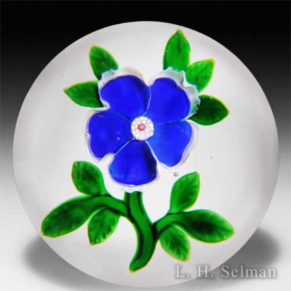 Antique Baccarat blue and white dogrose paperweight. by Baccarat Antique