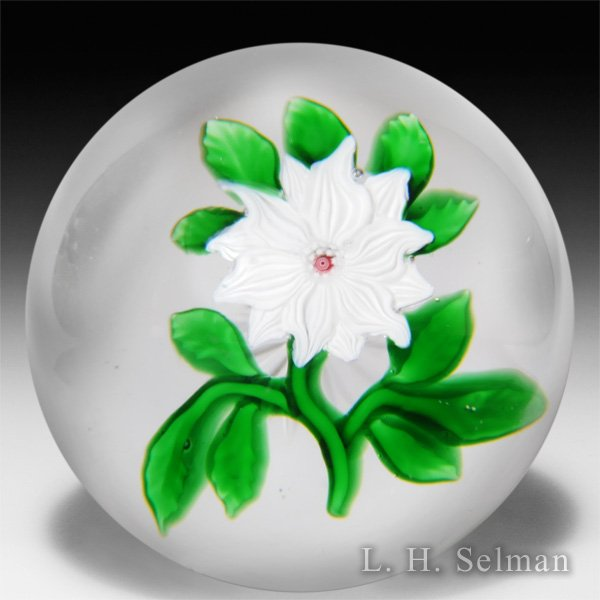 Antique Baccarat white double clematis glass paperweight. by  Baccarat Antique