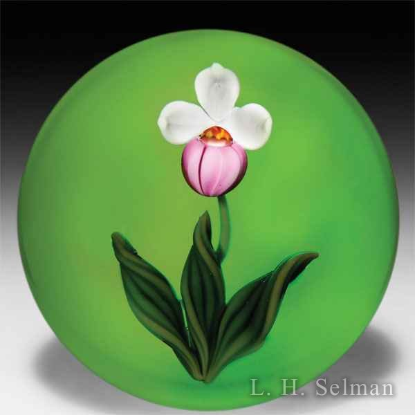 Gordon Smith 1984 pink and white lady's-slipper glass paperweight. by Gordon Smith