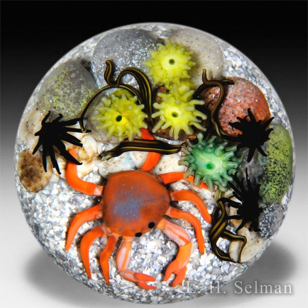 Cathy Richardson 2015 crab and sea anemones glass paperweight.  by Cathy Richardson