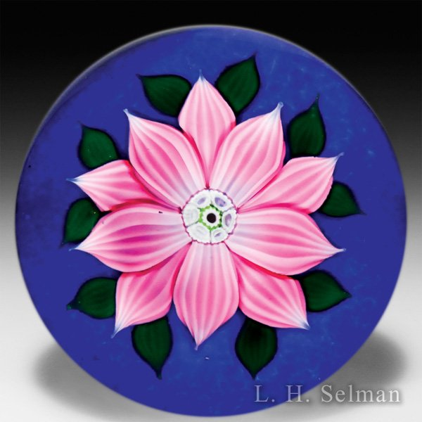 William Manson double clematis on dark blue ground glass paperweight. by William Manson