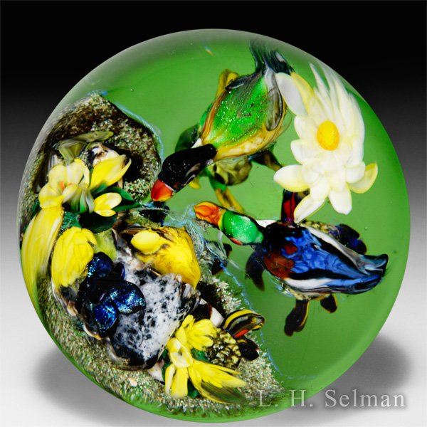 "Rick Ayotte 2014 ""First Swim"" ducks and turtles compound magnum glass paperweight. by Rick Ayotte"