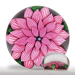 Lot 22 Outstanding Antique Saint Louis pink dahlia miniature paperweight