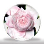 Lot 103 Rick Ayotte 1989 pink cabbage rose petite paperweight