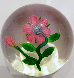 "The first paperweight purchased by a collector known as the ""Frankenstein of Cary"" more than 40 years ago turned out to be a rare Clinchy Fantasy Flower. The collector, who earned his nickname by outbidding other dealers, who said they had created a monster, figures this paperweight probably could fetch ""The 0,000 today. - Courtesy of 'Frankenstein'"