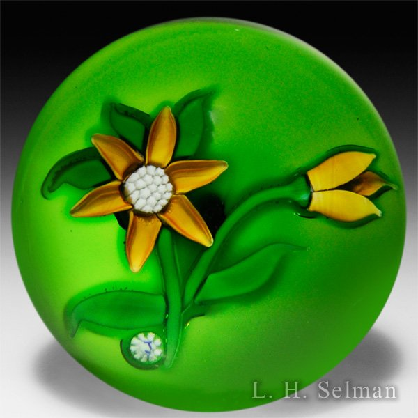 'J' Glass golden-yellow cle- matis & bud on green ground by J Glass
