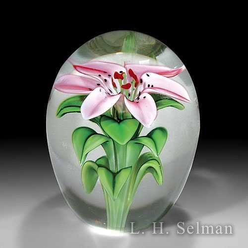 Orient & Flume Art Glass 'Daylily' high-domed magnum glass paperweight, by Bruce Sillars. by  Orient & Flume