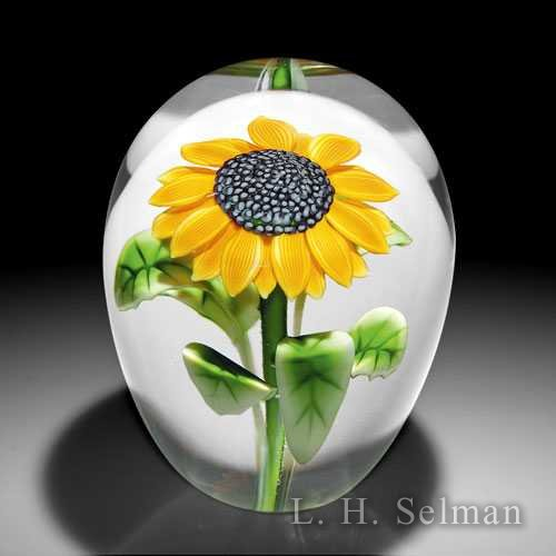 Orient & Flume 'Sunflower' high-domed magnum glass glass paperweight by  Orient & Flume