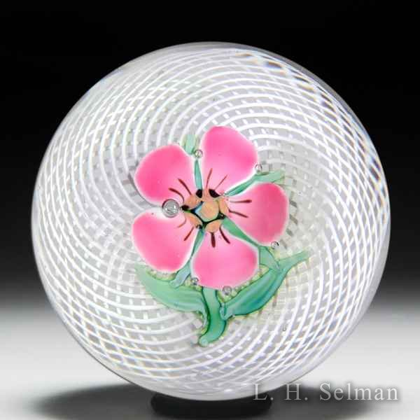 Antique Saint Louis pink pelargonium on swirling latticinio paperweight. by Saint Louis Antique