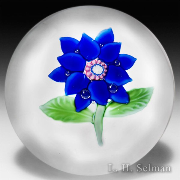 Antique Boston & Sandwich Glass Company blue poinsettia glass paperweight. by  American