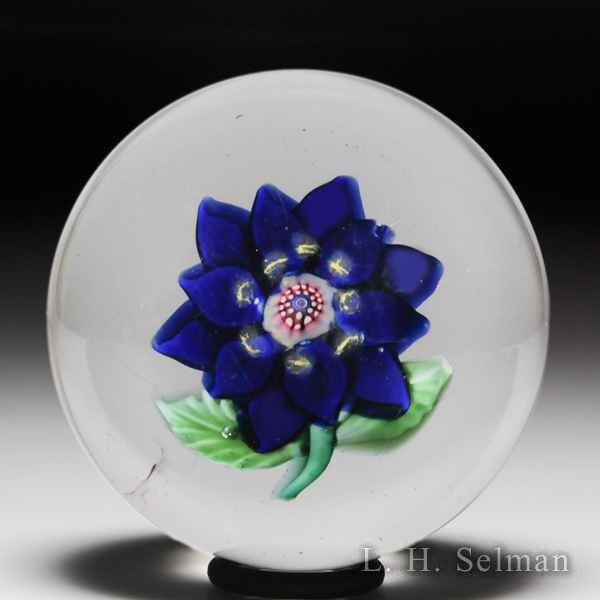 Antique Sandwich Glass Company cobalt blue double poinsettia glass paperweight. by  American