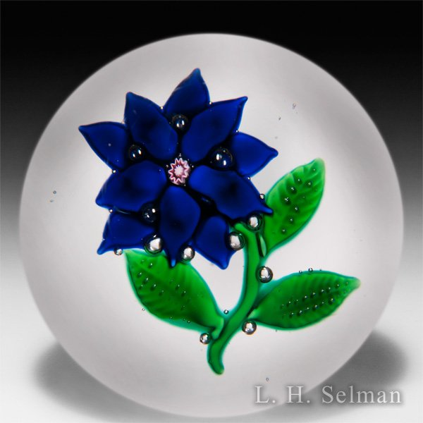 Antique New England Glass Company blue poinsettia glass paperweight. by  American