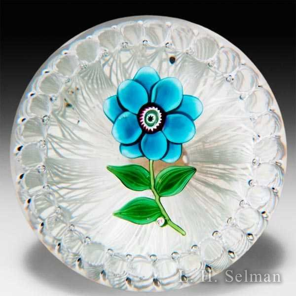 Paul Ysart blue flower in a latticinio basket glass paperweight. by Paul Ysart