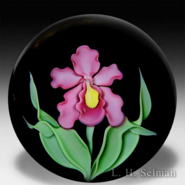 Orient & Flume pink iris over black ground paperweight, by Greg Held. by Orient & Flume