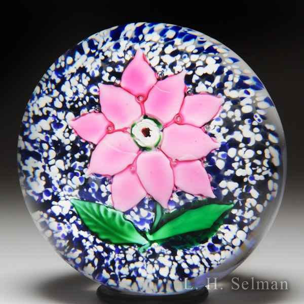 Antique Sandwich Glass Company pink poinsettia with Lutz rose glass paperweight. by  American