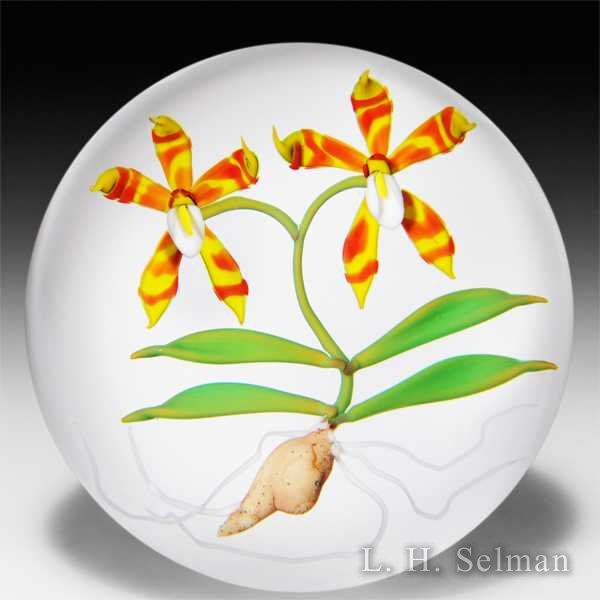 Chris Buzzini 1988 exotic orchids glass paperweight. by Chris Buzzini