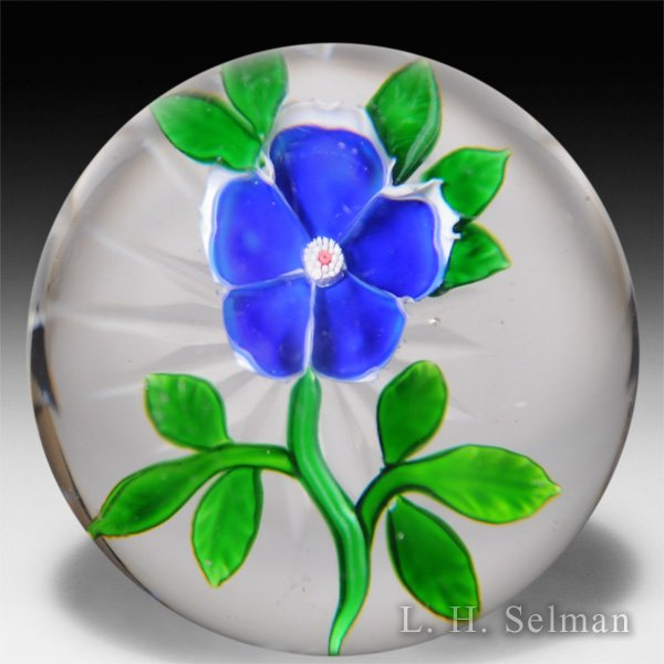 Antique Baccarat blue primrose paperweight. by  Baccarat Antique