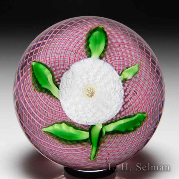 Antique Saint Louis white pompon on pink latticinio swirl glass paperweight. by Saint Louis Antique