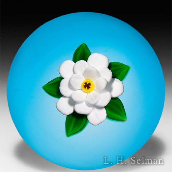 Bobbi Banford single white flower on translucent blue ground paperweight. by Bobbi Banford