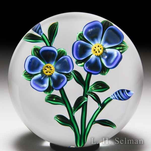 Bob Banford two fantasy flowers with buds glass paperweight. by Bob Banford
