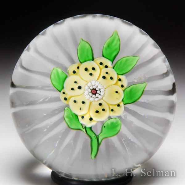 Antique Baccarat yellow wheatflower paperweight. by  Baccarat Antique