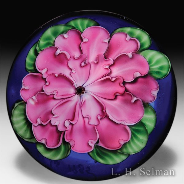 Lundberg Studios 1985 pink flower on cobalt blue ground low-domed paperweight, by Danny Salazar. by  Lundberg Studios