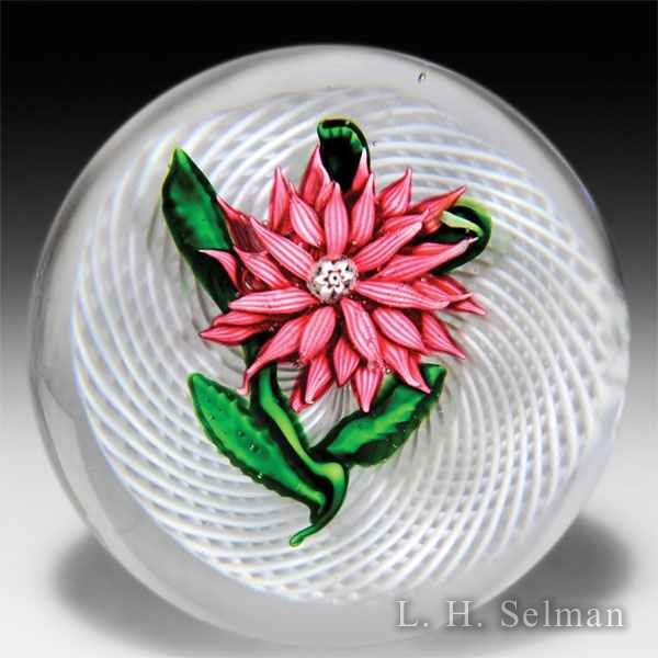 Rare antique Saint Louis pink aster on a latticinio swirl paperweight. by Saint Louis Antique
