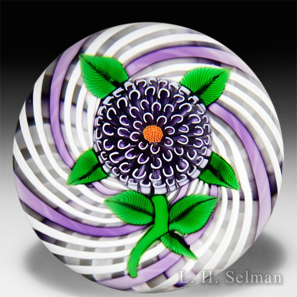 John Deacons 2015 purple pompon on latticinio swirl glass paperweight. by John Deacons