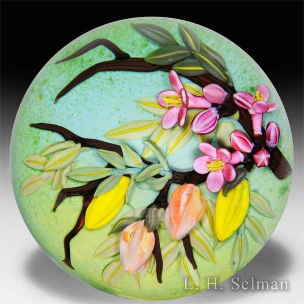 Cathy Richardson 2016 Asian starfruit and blossoms glass paperweight. by Cathy Richardson