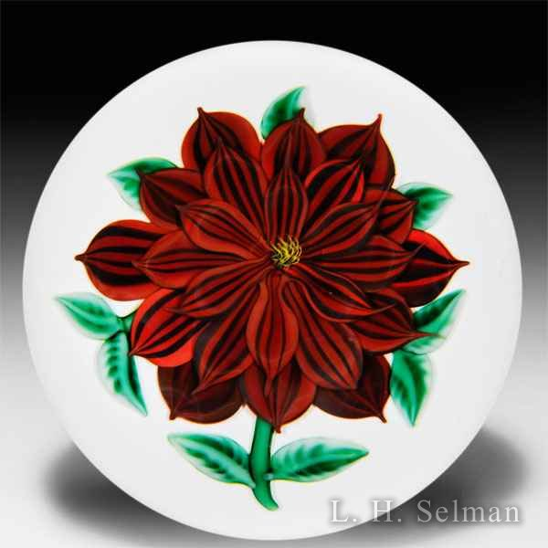 Randall Grubb 1988 red dahlia on white ground paperweight. by Randall Grubb