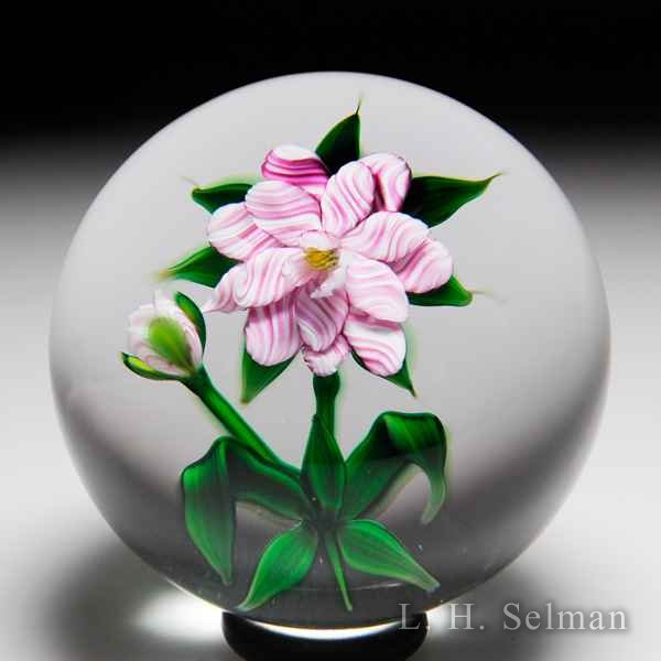 Debbie Tarsitano double-tiered pink-striped flower paperweight. by Debbie Tarsitano