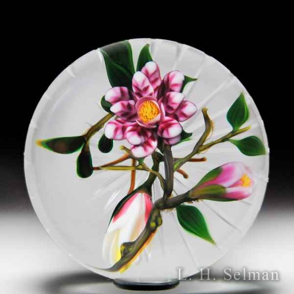 Debbie Tarsitano magenta blossom and buds compound glass paperweight. by Debbie Tarsitano