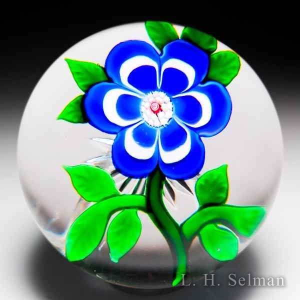 Antique Baccarat blue and white primrose on star-cut ground glass paperweight. by  Baccarat Antique