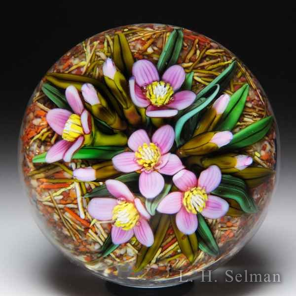 Cathy Richardson 2017 'Woodland Spring Beauty' pink blossoms miniature glass paperweight. by Cathy Richardson