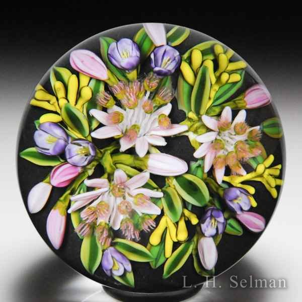 Cathy Richardson 2017 'Astrantia on Black' flowers and buds glass paperweight. by Cathy Richardson