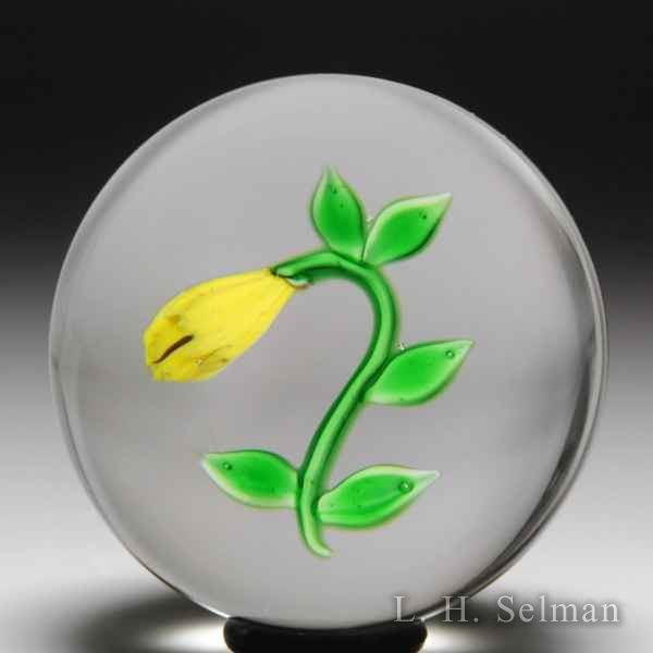 Victor Trabucco 1978 yellow bellwort miniature glass paperweight. by Victor Trabucco