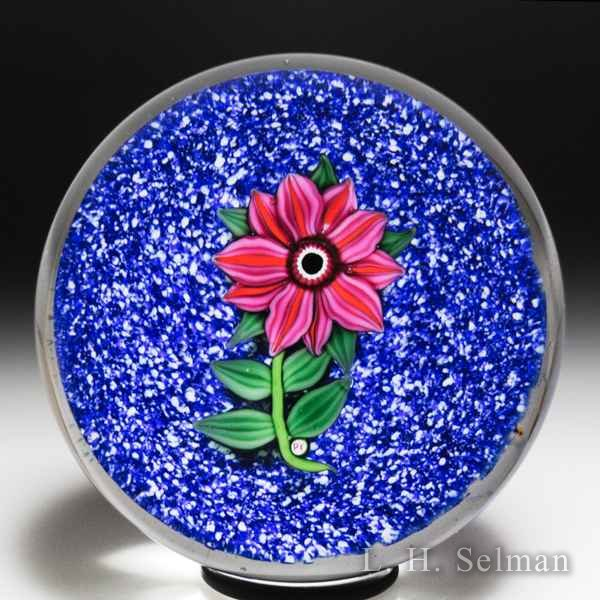 Paul Ysart pink and red double clematis glass paperweight. by Paul Ysart