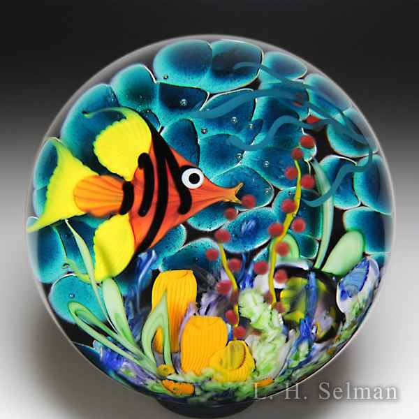 Mayauel Ward 2018 red angelfish in coral reef compound paperweight. by Mayauel Ward