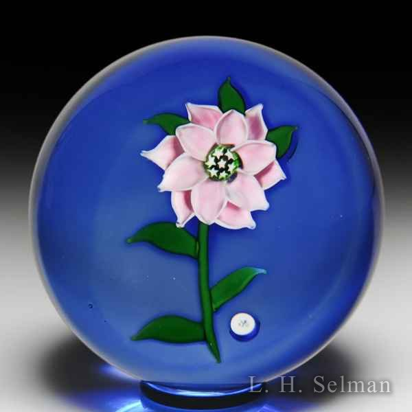 'J' Glass 1980 pink double clematis glass paperweight, by John Deacons. by J Glass