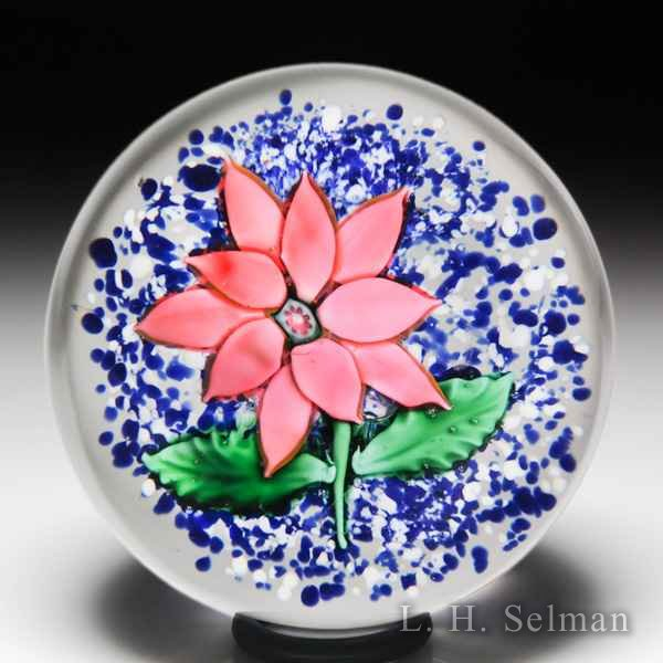 Antique Boston & Sandwich Company pink double poinsettia on jasper glass paperweight. by  American