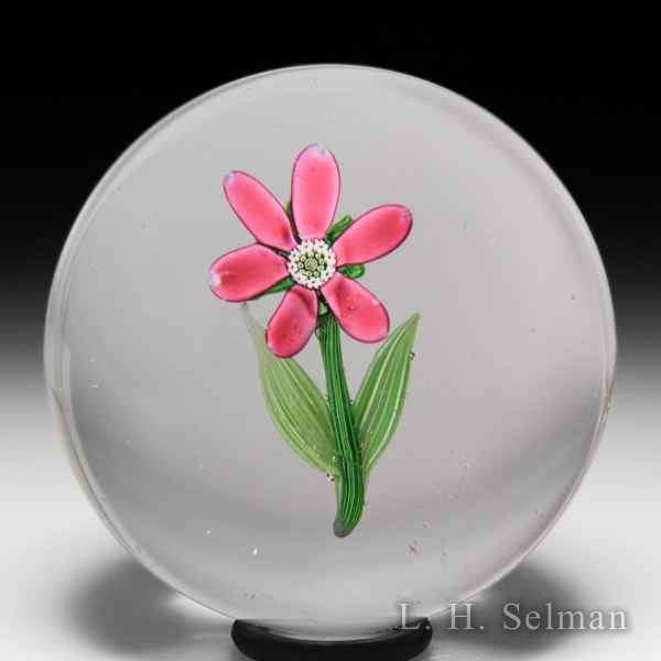 Rare antique Clichy pink flower paperweight. by  Clichy