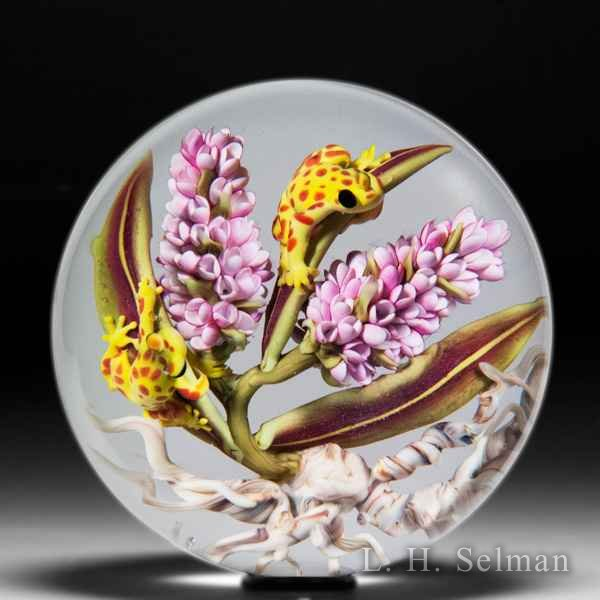 Clinton Smith 2019 poison dart frogs on pink lilac paperweight. by Clinton Smith