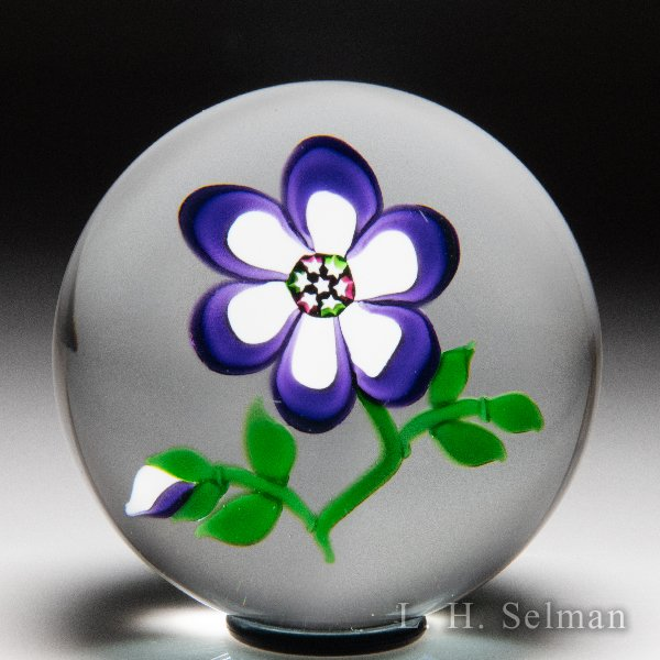 'J' Glass 1980 purple and white primrose glass paperweight. by J Glass