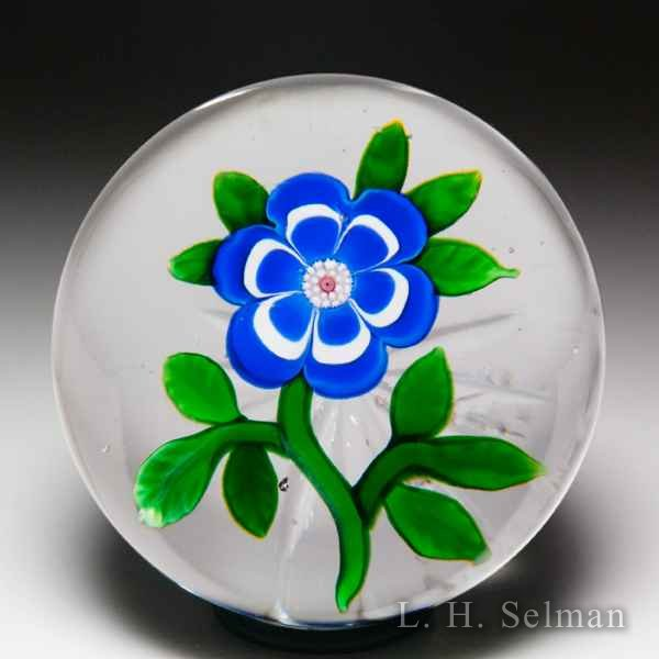 Excellent antique Baccarat blue and white primrose paperweight. by  Baccarat Antique
